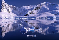 Paradise Bay von Danita Delimont