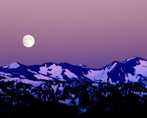 Moonrise from Hurricane Ridge in Olympic National Park by Danita Delimont