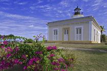 View of Faro Punta Mulas lighthouse by Danita Delimont