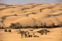 Ubari sand dunes von Danita Delimont