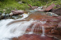 Red rock in Baring Creek in Glacier National Park in Montana von Danita Delimont