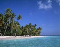 Maldives von Danita Delimont