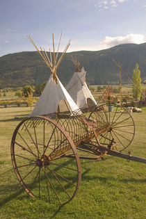 Tepees & Antique Farm Equipment von Danita Delimont