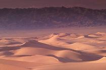 Khongoryn sand dunes by Danita Delimont
