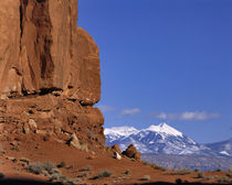 The Windows Section of Arches National Park in Utah looks east to the La Sal Mountains von Danita Delimont