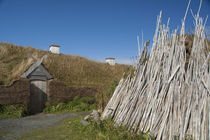 Replica of Viking longhouse with drying firewood von Danita Delimont