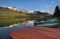 Jasper Canada by Danita Delimont