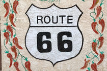 Holbrook Route 66 street sign von Danita Delimont