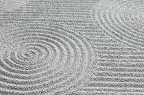 Pattern in Sand von Danita Delimont