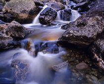 Fish Creek Falls near Steamboat Springs Colorado by Danita Delimont