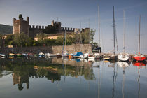 Il Castello Scaligero by Danita Delimont
