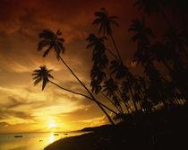 Sunset on Molokai von Danita Delimont
