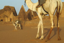 Meroe pyramids with cameldrivers by Danita Delimont