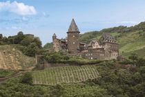 Schloss Stahleck and Vineyards above the Moselle River by Danita Delimont