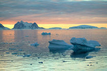 Out of Port Lockroy Antarctica Peninsula by Danita Delimont