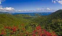 S Virgin Islands von Danita Delimont