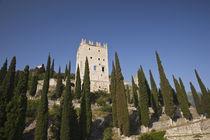 Castello di Arco by Danita Delimont