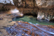 The Subway along the Left Fork of the Virgin River in Zion National Park in Utah in autumn von Danita Delimont