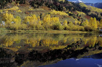 Telluride fall reflections in pond; early snow on mountains von Danita Delimont