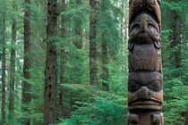 A totem stands on the edge of the forest by Danita Delimont