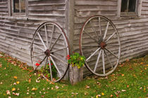 Wagon Wheels by Danita Delimont