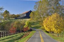 Kentucky von Danita Delimont