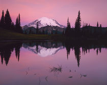 Dawn at Tipsoo Lake von Danita Delimont