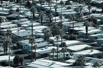 Trailer Park on East Palm Canyon Drive von Danita Delimont