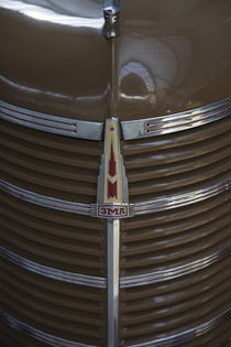 Hood ornament of 1960s Moskvitch car made at Soviet-era ZMA car factory by Danita Delimont