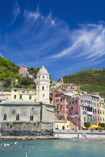 Harbor and Church of Vernazza von Danita Delimont