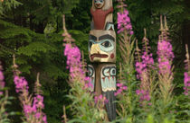 Totem pole with fireweed by Danita Delimont