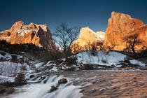 Winter von Danita Delimont