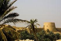 Al-Diriya old town of Saud family von Danita Delimont