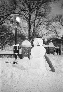 Snowman in Central Park by Danita Delimont