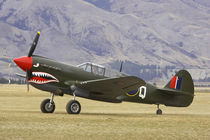 Curtiss P-40 Kittyhawk von Danita Delimont