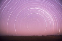 Star trails by Danita Delimont