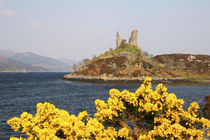 The ancient ruins of Kyleakin Castle or Castle Moil at the entrance to the Isle of Sky von Danita Delimont