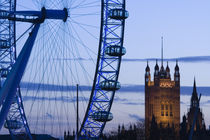 London: Houses of Parliament and London Eye / Evening by Danita Delimont