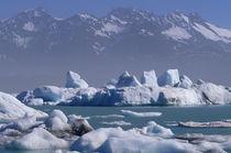 Glacier and icebergs von Danita Delimont