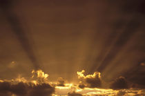 Dramatic godbeams by Danita Delimont