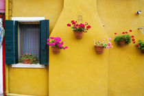 Colorful Burano City homes by Danita Delimont