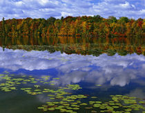Autumn color reflects in Park Haven Lake by Danita Delimont