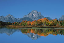 Oxbow Bend by Danita Delimont