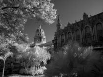Infra red of Capitol building dome in Havana Habana Cuba von Danita Delimont