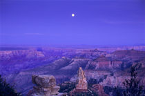 Moonrise over Point Imperial and the North Rim by Danita Delimont