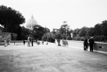 The Vatican Gardens by Danita Delimont
