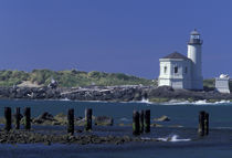 Coquille Lighthouse by Danita Delimont