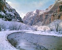 Utah by Danita Delimont
