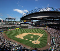 Mariners baseball game by Danita Delimont