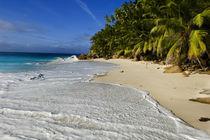 Anse Victorin Beach von Danita Delimont